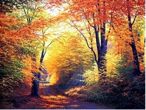 podzim-1